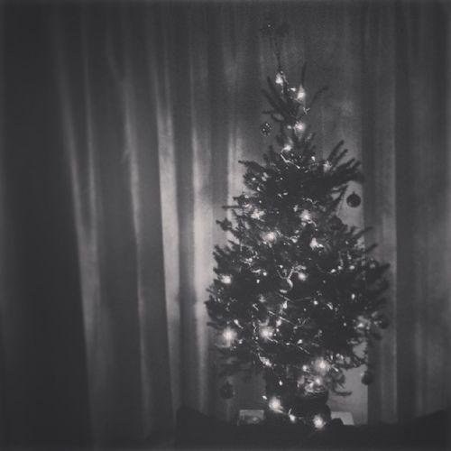 Christmas Ohchristmastree