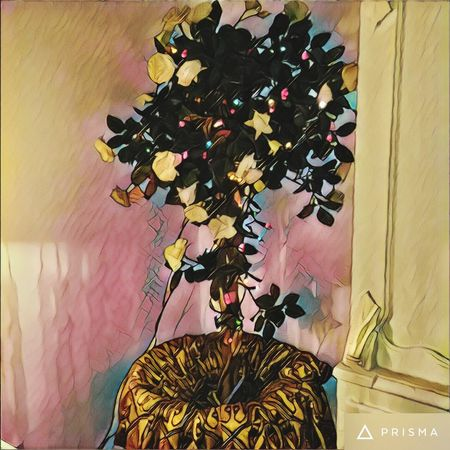 My Prettytree Decoration Indoors  Multi Colored Fairylights Silkcouture Statement Vintage Cartoon Effect