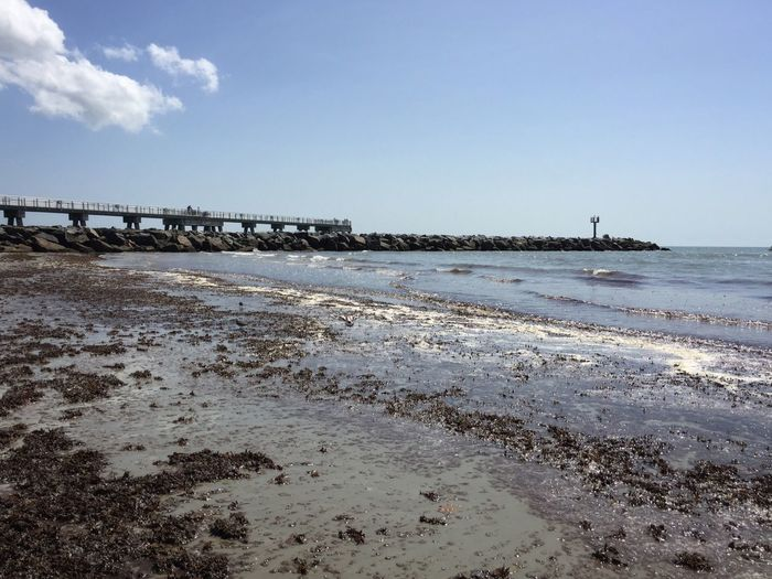 Low tide at Jetty Park Jetty Park Port Canaveral Canaveral Florida Florida Beach Fishing Pier