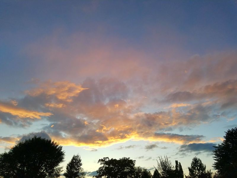 Tree Nature Cloud - Sky Beauty In Nature Multi Colored Sunset Tranquility Sky Outdoors Utah Scenery Beauty In Nature Trees Silhouette Dramatic Sky Tranquility Mysterious Scenics Nature Tree Sunset Clouds And Sky Beauty Horizon