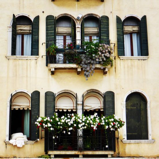 Window facade with white floral decorations Facade Building Windows Decoration Bed Window Architecture Building Exterior Built Structure Building Plant Potted Plant Flower House No People Residential District Outdoors