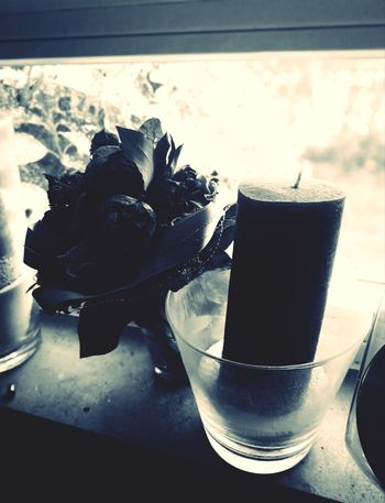 Last Time Flower Past Memory Dying Flowers Onelasttime Silent World Silence Indoors