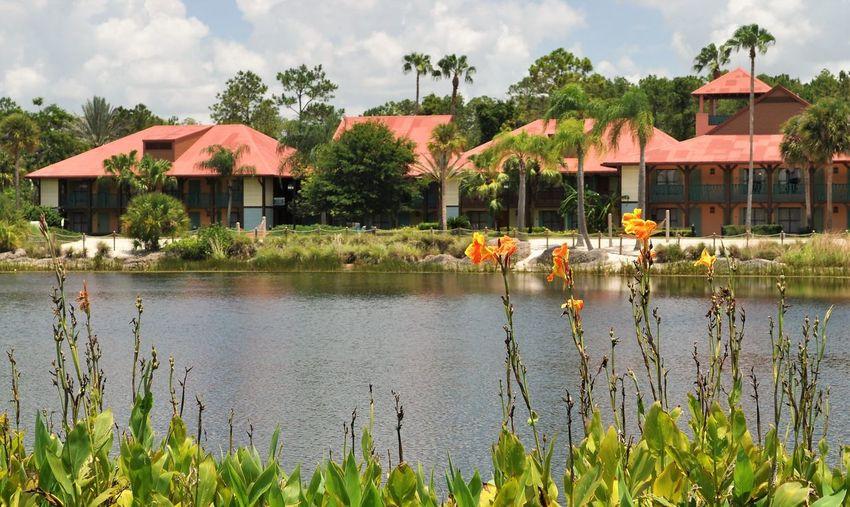 Beautiful CoronadoSprings Disney DisneyWorld Orlando, Florida- Disney Resort Tropical Vacation