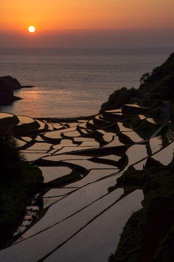 佐賀 玄海町 棚田 夕日 海 Saga Sunset Sea Japan