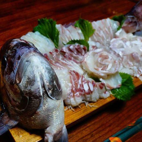 Japan Miyazaki Takachiho Dinner Fish BIG Raw Sashimi  Redseabream Red 魚 鯛 活き造り