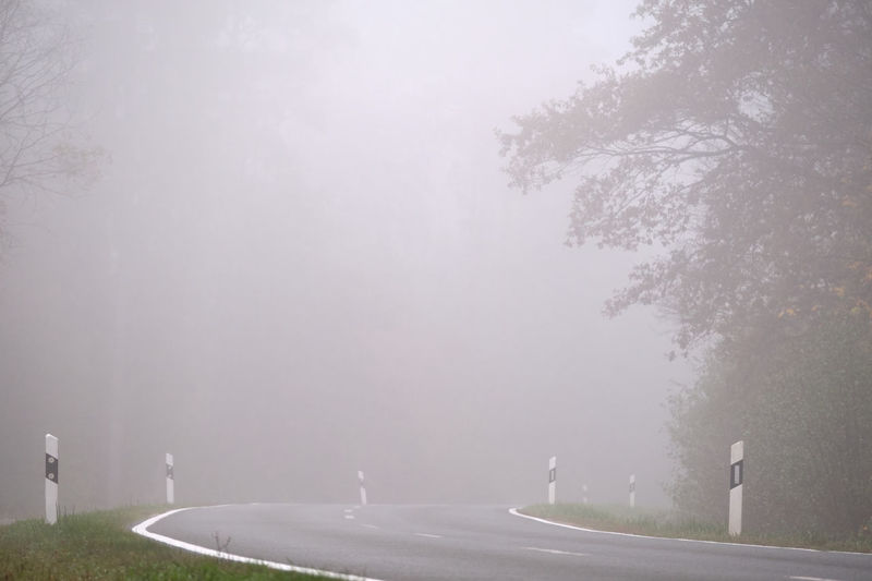 Road by trees against sky in foggy weather