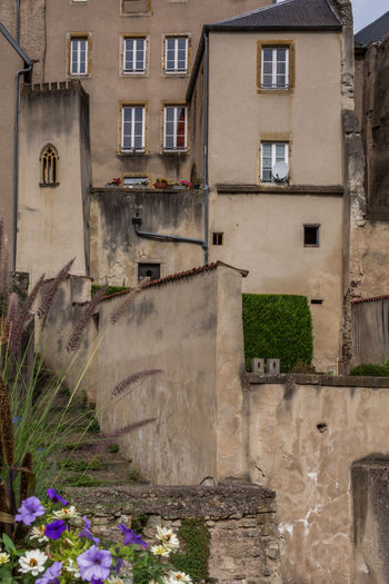 Architecture Building Exterior Built Structure Day Exterior Flower Footpath Growth Lothringen Medieval No People Old Town Outdoors Plant Residential Building Window