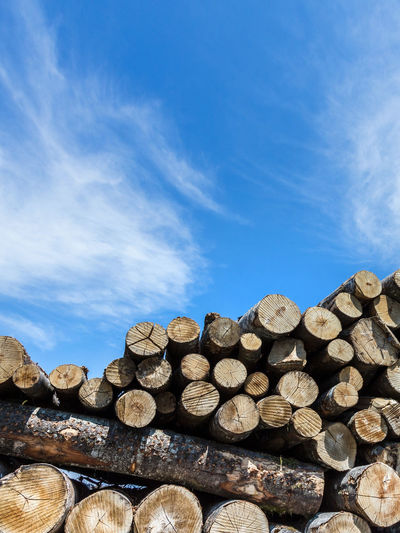 Wood Pile Stacked Tree Forest Stack Background Sky Stock Firewood Up Wooden Timber Cut Heap Pine Nature Trunk Lumber Log Logging Industry Outdoor Material Forestry Blue Environment Ecology Deforestation Logs Bark WoodLand Chopped Energy Winter Closeup Raw Sawed Freshly Rural Resource  Vertical