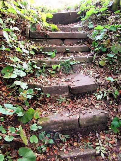old stone steps Architecture Backgrounds Close-up Full Frame Nature No People Outdoors Steps Stone Material Uneven Surface Unevenness