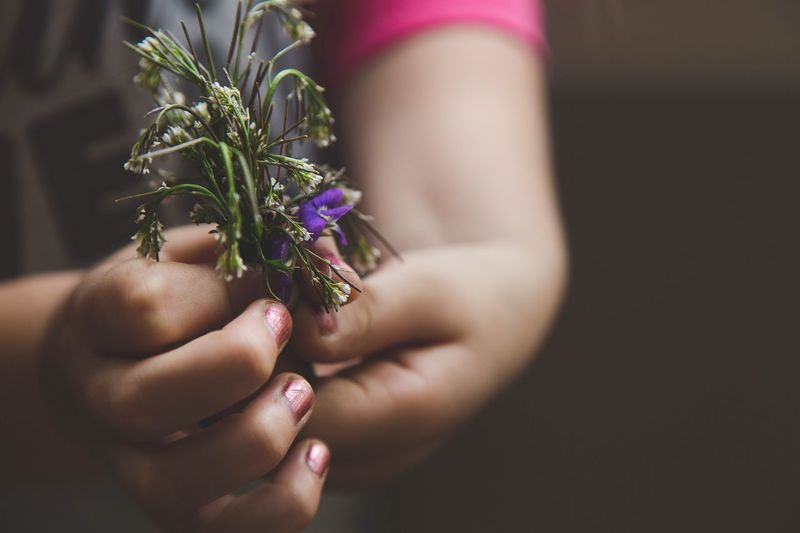 Close-up of woman hand holding flower bouquet