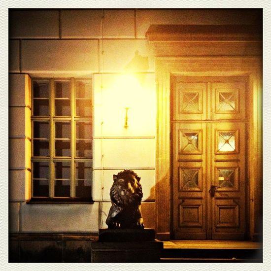 Halle (Saale) Doors