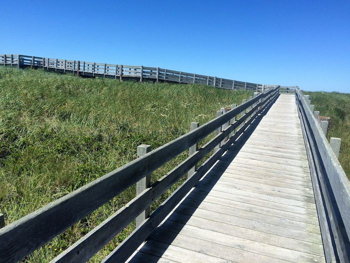 Beach Boardwalk Architecture Blue Bridge - Man Made Structure Built Structure Clear Sky Day Footbridge Grass Nature No People Outdoors Railing Sky The Way Forward