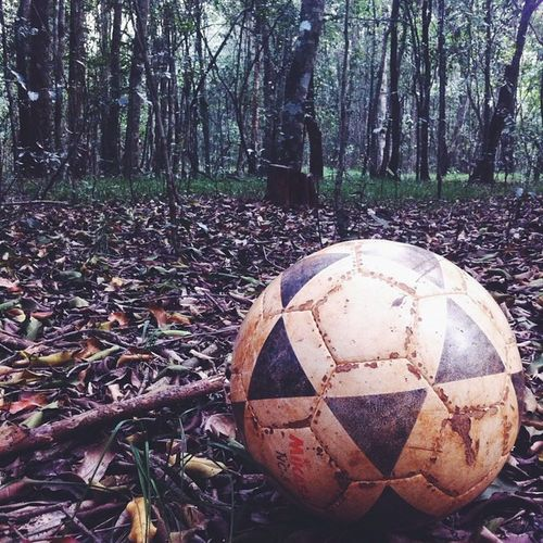 """""""Let me not forget the use of my own legs, that's of a craftsman with eyes...that reflect the technology around me."""" Vscocam Vscoboss Vscoedit Vscocamedit vscophile vscocamgram ball football soccer natureshot nature natureisababe tree trees"""