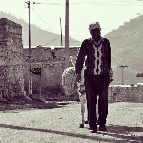 Igs_photos Iranshot Iranpix Irpx