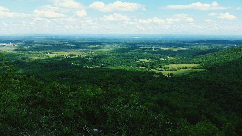 Focus more on the green we can't replace... Hello World Beautiful Nature Beautiful Day Upstateny Upstate New York Savetheplanet Priorities SaveMotherEarth Gaia Scenic Lookout