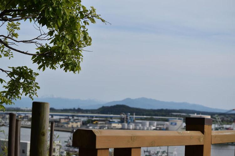 ひよりやまより Green Japan Riverside SAKATA Bridge Day Fence Mountain Nature No People Outdoors Park Plant River Sky Sunrise_sunsets_aroundworld Sunset Tree Wood - Material