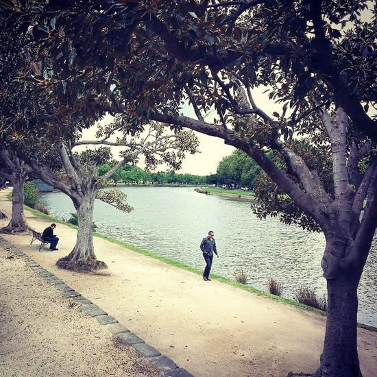 Gloomy Yarra River Melbourne australia south picoftheday instadaily park walk holiday