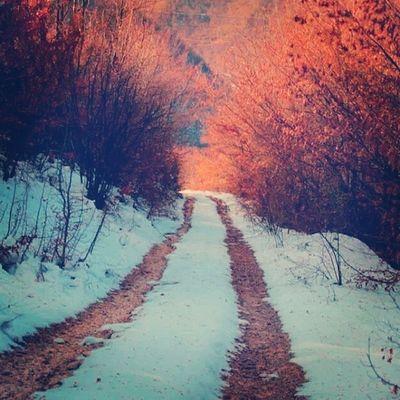 Nice Nice Beatiful Winter ?⛄