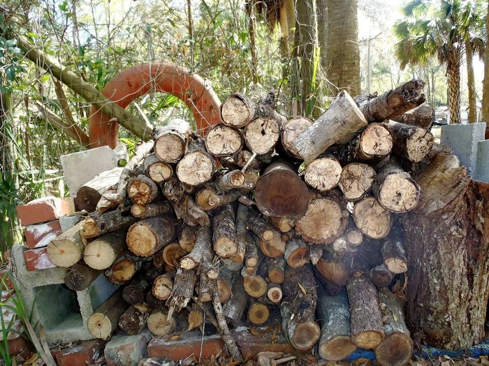 Wood Pile Wood Stacked Logs Winter Preparations Stockpiling Stockpile Timber Firewood Firewood Stack