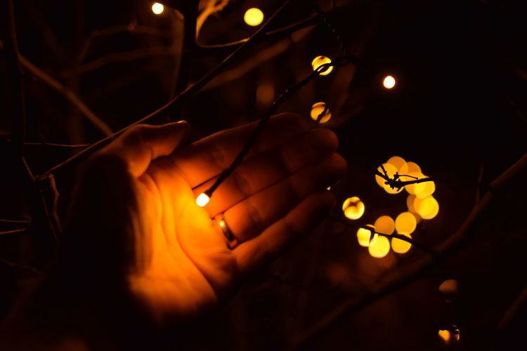 Cropped Hand Of Person Holding Illuminated Lighting Equipment On Plant