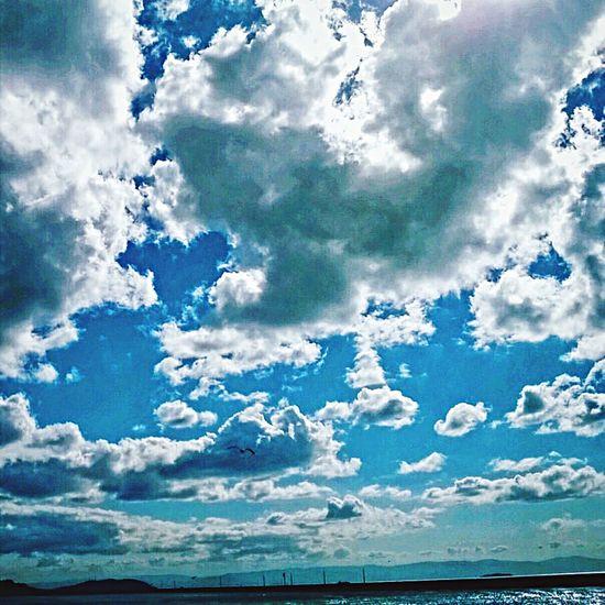 First Eyeem Photo Turkey Kocaeli Gökyüzümavi Blue Sky Bird Clouds And Sky Clouds