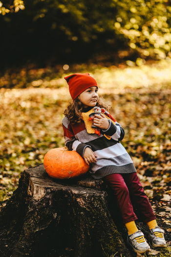 A little girl child in warm dress and a red hat is sitting with pumpkin on a stump in an autumn park
