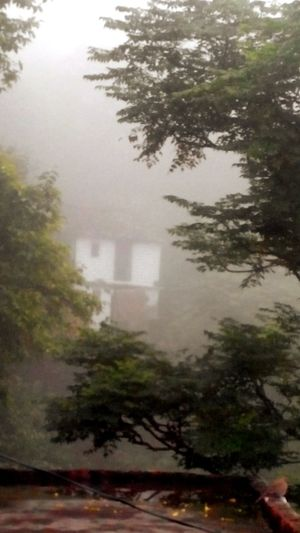 Village Homes Foggy Morning Lush Green Mountains Kumaon Travel Diaries