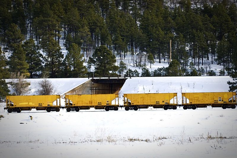 """Empty Yellow Freight Cars"" Four empty freight cars sit idle on the train tracks against a snow covered tapestry in Williams, Arizona, USA. Train Train Tracks Freightcar Railroad Railroad Track Winter Snow Yellow"