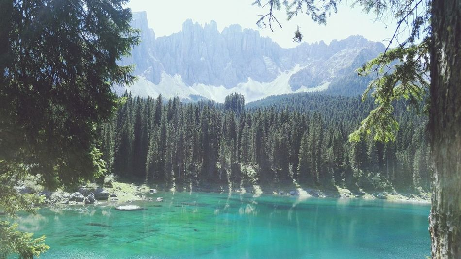 Tree Mountain Nature Beauty In Nature Day Mountain Range Forest Sky Water Outdoors Italy Südtirol Holiday Traveling Sunny Beauty In Nature Italian Karersee Landscape