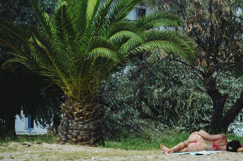 Rear view of woman wearing bikini while lying on field