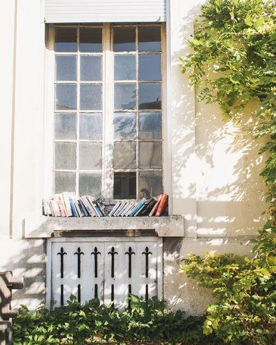 House in window