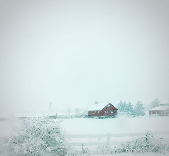 Barn Red Barn Snow Day Red Spot Of Color Fence Taking Photos Snow Storm IPhoneography IPS2016Composition IPS2016Winter EyeEm Best Shots Cold Tradtional Reminiscent Bold Familiar Home Sweet Home Iphoneonly Smartphone Photography Natural Light Winter Wonderland Winter Seasons Newyorkwinters