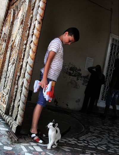 the boy and the cat Emotions Kindness Life Love Animal Themes Boys Cat Child Childhood Domestic Animals Lifestyles Live One Animal One Person People People Photography Pets Playing Real People Real People, Real Lives Standing Story Street Photography Urban