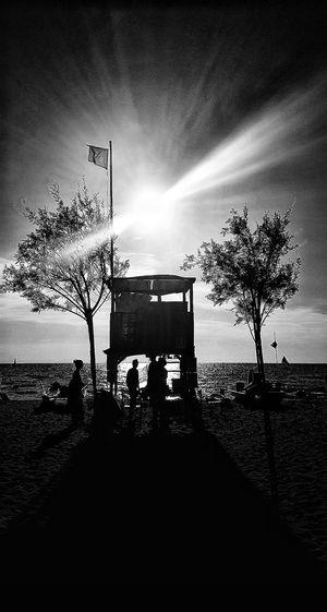 Beach Beachlife Tuscany Beach Photography Flag Tree Shadows And Silhouettes Blackandwhite Blackandwhite Photography Black And White Portrait Bw Shadows September Summer Is Ending Poster Sunset Sea Tree Silhouette Sky Cloud - Sky Sun Calm