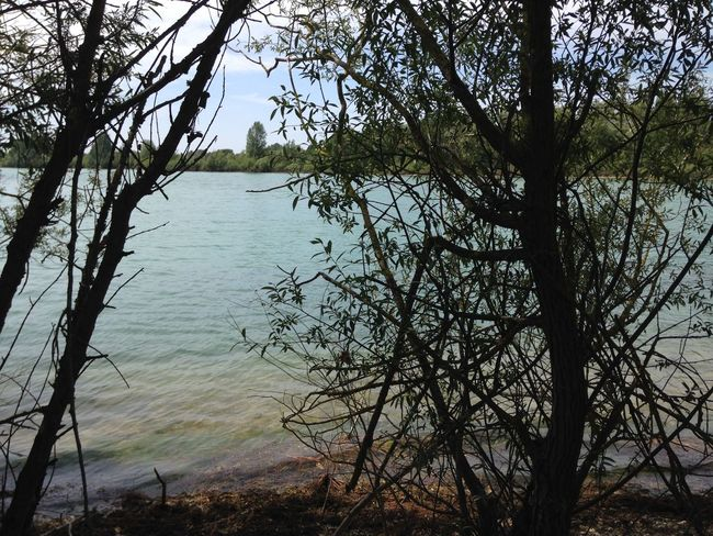 Lac de St Cyr (Vienne - 🇫🇷) Août 2017 Peaceful View Tree Beauty Beauty In Nature Far From City Life Fishing No People Tranquil Scene Tranquil View Viewpoint Water Lake