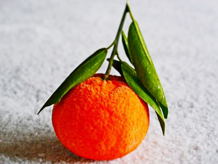 Close-up Day Food Food And Drink Freshness Fruit Healthy Eating Indoors  Leaf No People Orange Fruit Plucked Studio Shot Vitamin C