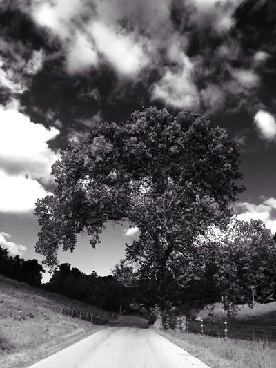 What Does Peace Look Like To You? What Peace Looks Like EE_Daily: Black And White EyeEm Nature Lover