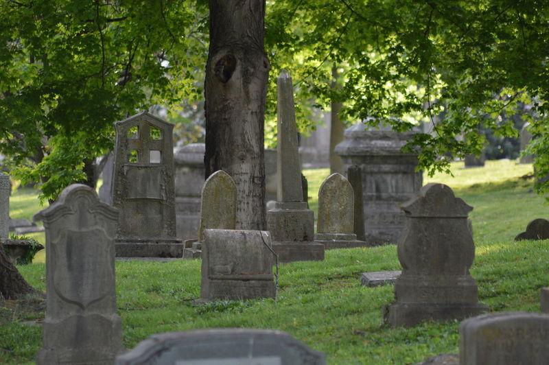 Gravestones at cemetery