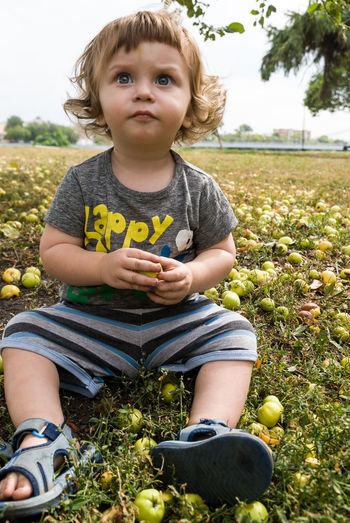 Boy sitting with apples on grassy field in park