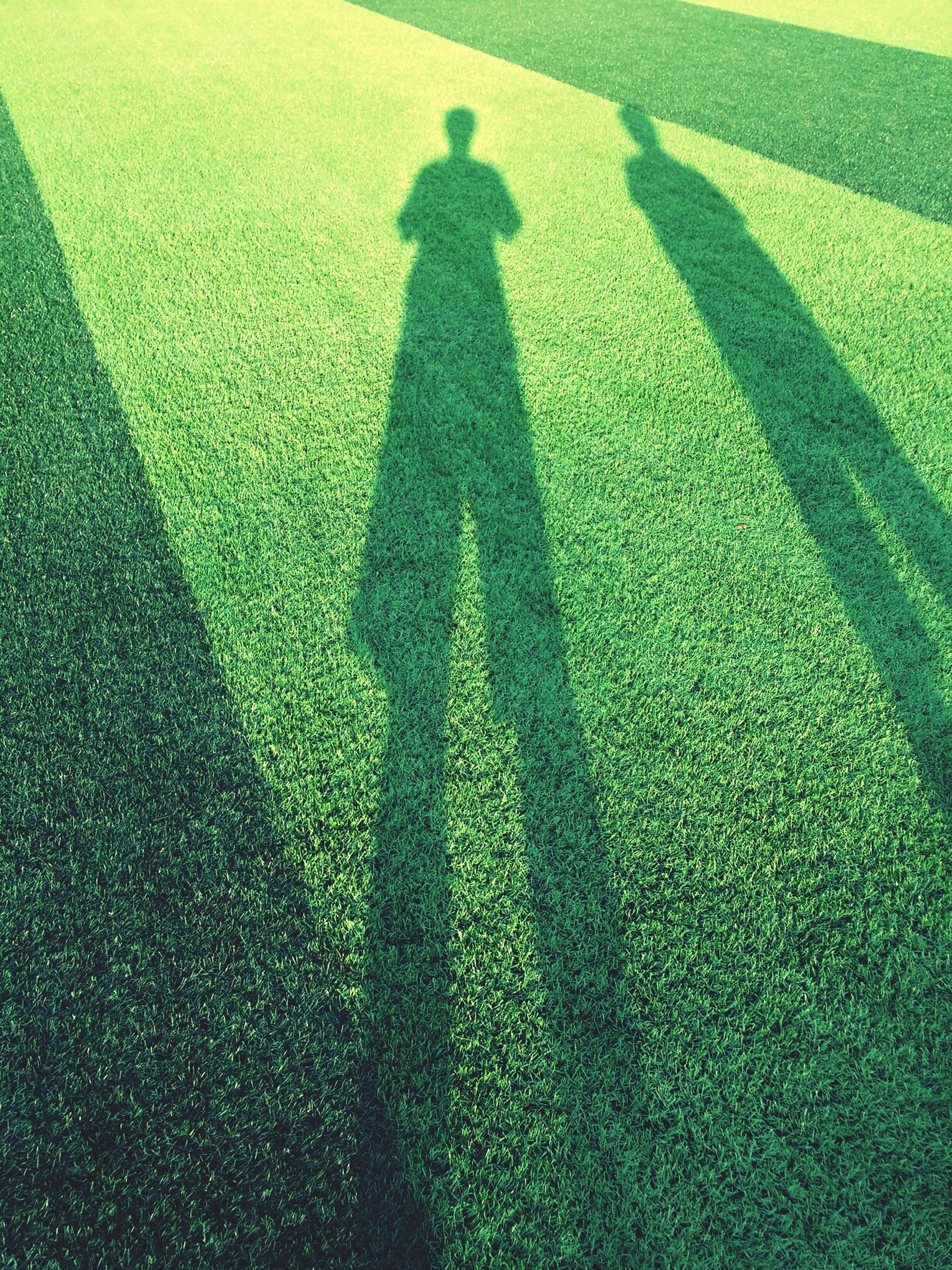shadow, focus on shadow, high angle view, grass, green color, sunlight, unrecognizable person, field, men, lifestyles, growth, day, grassy, leisure activity, outdoors, low section, nature