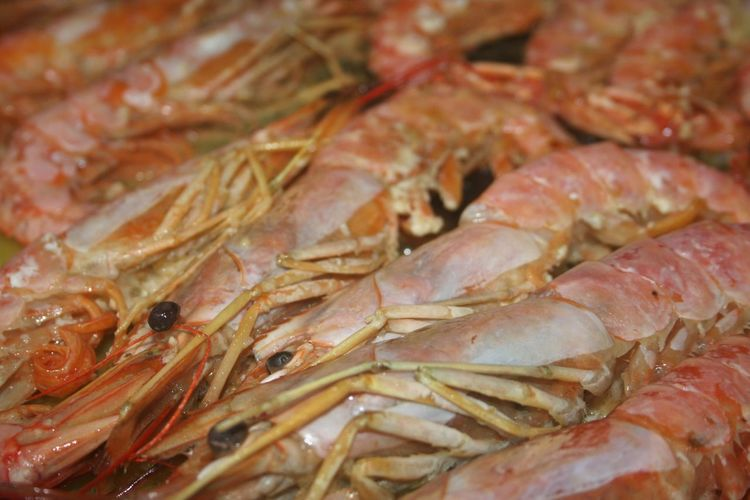 Close-up Fish Market Food Food And Drink Freshness Full Frame Healthy Eating Indoors  Market No People Prawn Raw Food Seafood