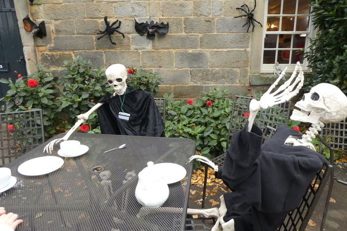 Architecture Day Display Halloween Outdoors Skeleton Skeletons Tea Time