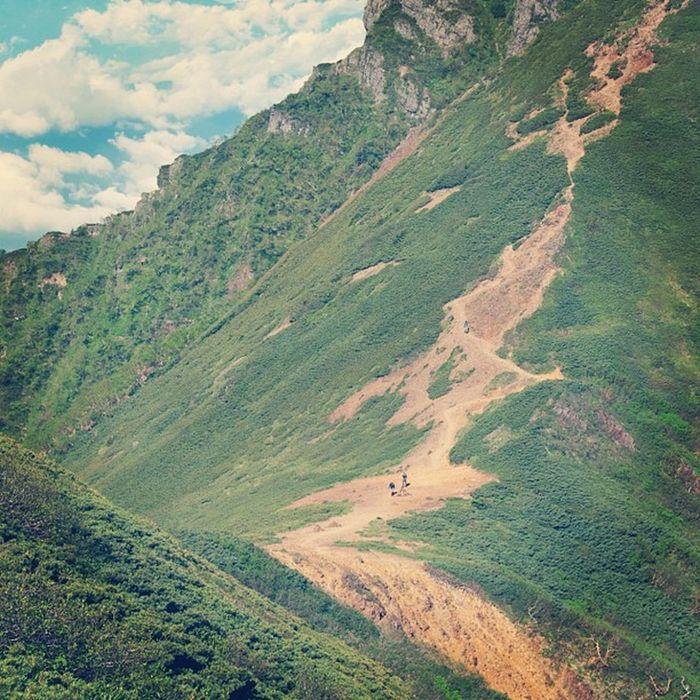 トレッキング #山 #トレッキング #自然 #八ヶ岳 #mountain #nature #green #naturelovers Nature Green Mountain Naturelovers 自然 トレッキング 山 八ヶ岳