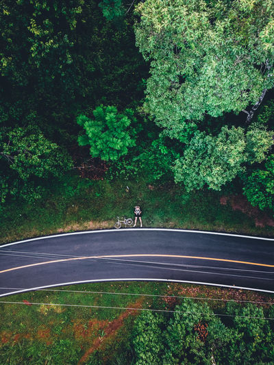 Man riding bicycle on road by trees