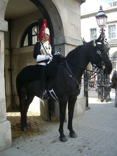 Household Cavalry Capital City Famous Place GB Guard Helmet Historic Horizon Over Water London London Lifestyle Mounted Soldier No Incidental People On Guard On Guard Duty Soldier Stationery Sunlight And Shadow Sword Tourist Attraction  Tourist Destination Traditional Costume Uniform