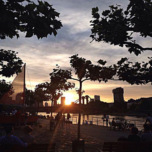 Enjoying The Sun Frankfurt