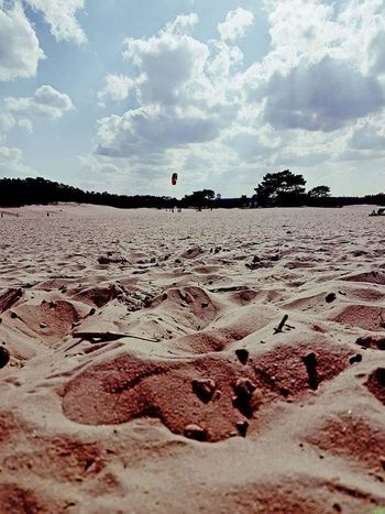 Sand Soesterduinen Soest Sky Cloud - Sky Outdoors People Sand Dune Nature Tree Day Flying A Kite