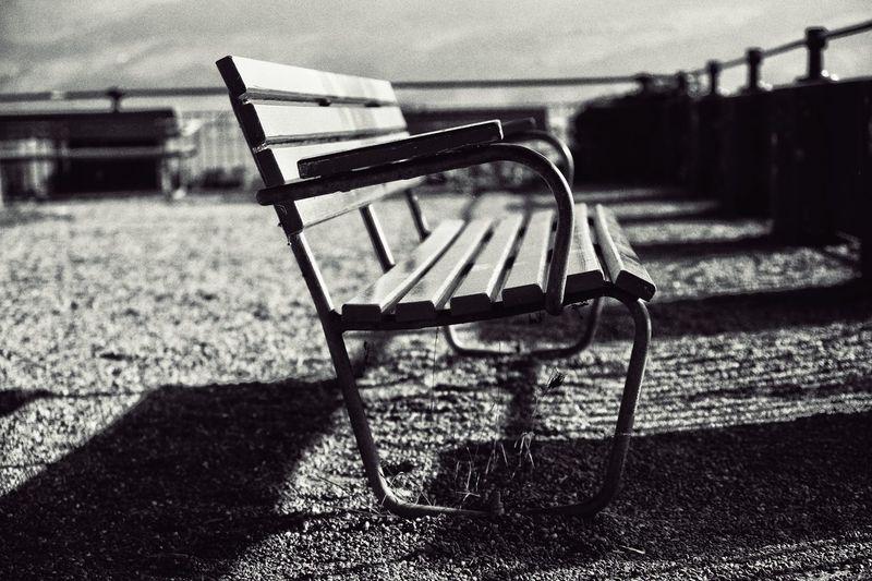 Empty bench on field