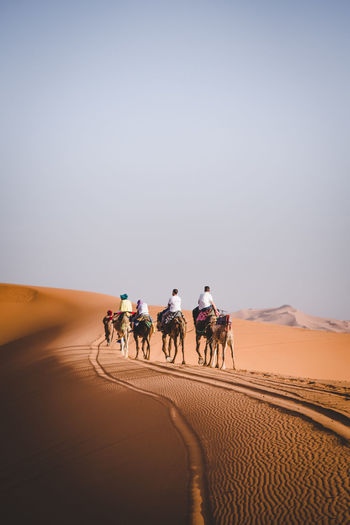 Tourists riding camels on sand dune in desert against clear sky