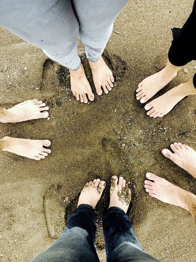 THESE Are My Friends Friends ❤ Beach Sand Sandy Beach Enjoying Life Taking Photos Taken By Me Mobliephotography Popular Popular Photos Popular Photo IPhoneography IPhone Photography Iphonephotography Beautiful Awesome EyeEm Top View IPS2016People